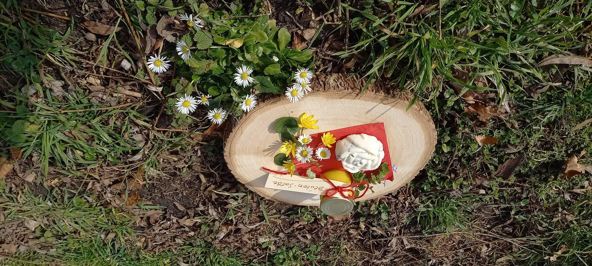 Salben, Cremes und C.o mit Wildpflanzen