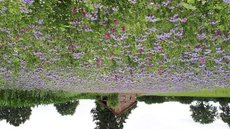 """""""Blühende Landschaft"""" bringt Wadersloh zum Blühen"""